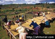 Africká ekonomika