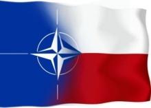 Česká republika v NATO, referendum