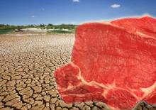Nedostatek zásob vody a hladomor