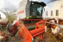 České zemědělství a potravinová soběstačnost